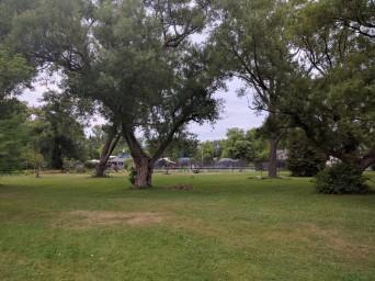 Park on Toronto Island
